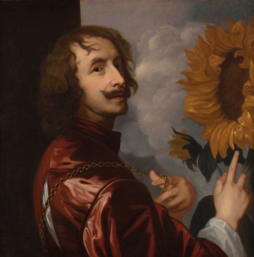 After Van Dyck Self portrait with sunflower c 1630 Philip Mould