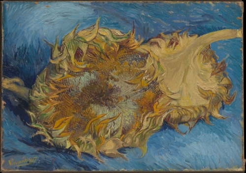 Two cut sunflowers 1887 Met Mus NY Pic sm