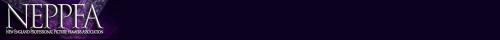 cropped-neppfabanner2014-sm-240x1260