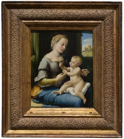 Raphael Madonna of the pinks NG6596