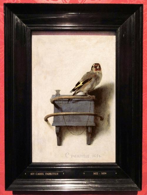 Carel Fabritius The goldfinch ed sm