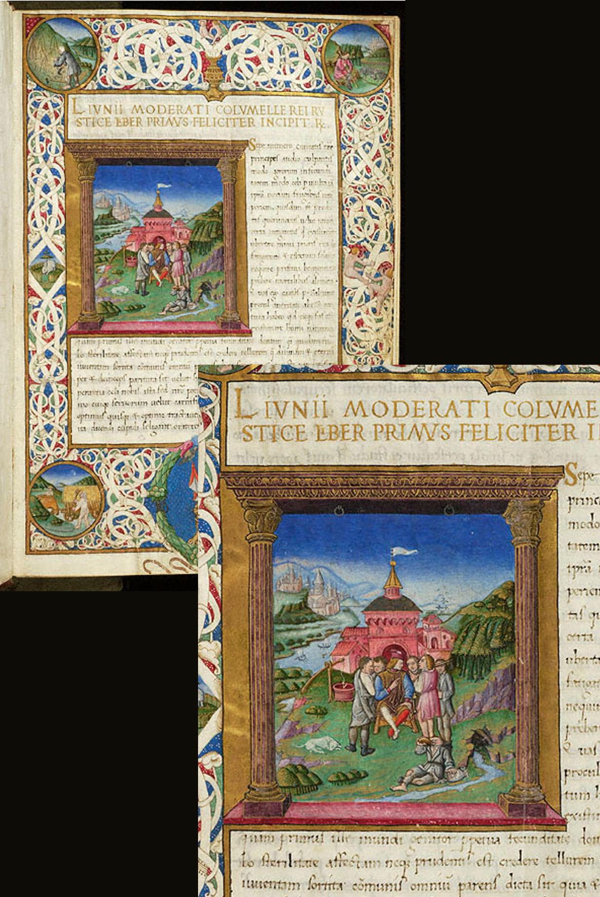 35 De re rustica Italy probably Milan 1469 The Morgan Library